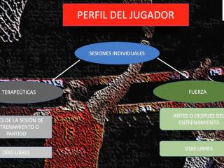 seminario-virtual-2020-17
