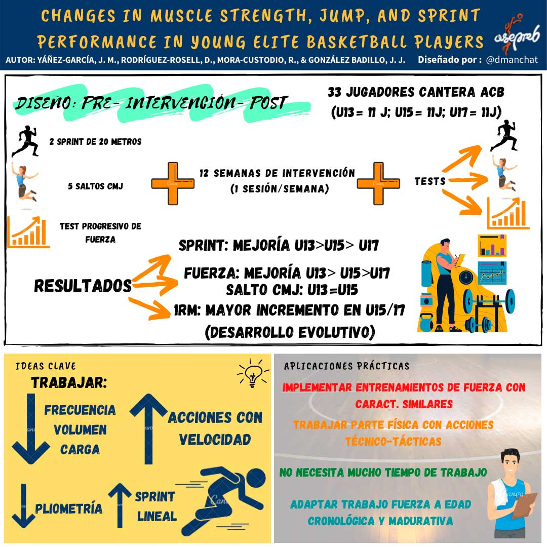 Infografía. Changes in muscle strength, Jump and Sprint Performance