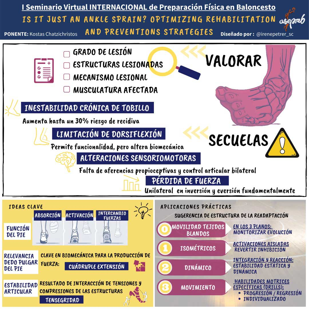Infografía. Is it just an ankle sprain? Optimizing rehabilitation and preventions strategies